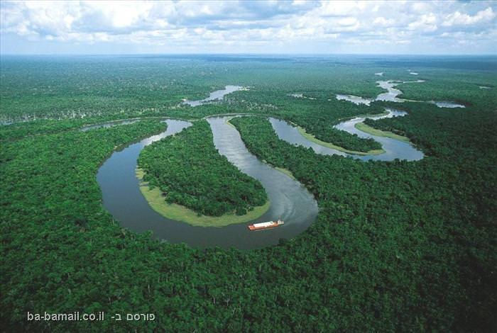 נהר האמזונאס