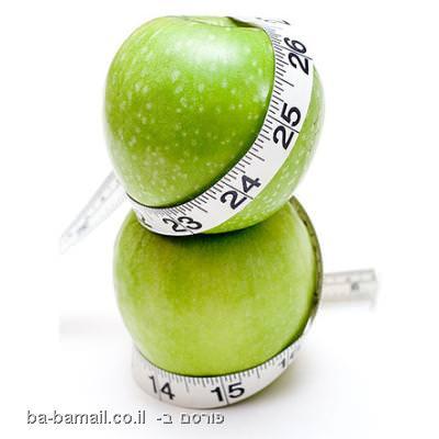 לרדת במשקל, דיאטה