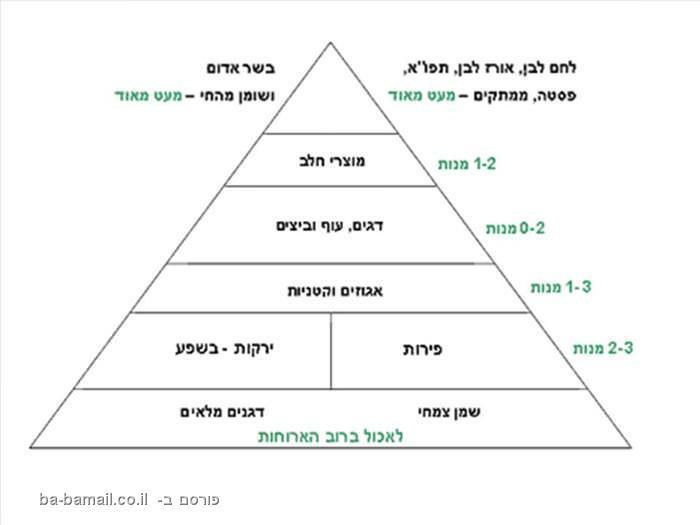 פירמידת המזון