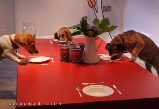 מסעדה לכלבים