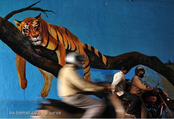 ציור קיר, אומנות, עולם, תמונה