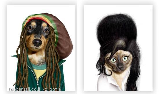 כלבים, חתולים, מפורסמים, סלבס,איימי ווינהאוס, בוב מרלי