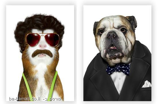 כלבים, חתולים, מפורסמים, סלבס, בוראט, ווינסטון צ'רצ'יל