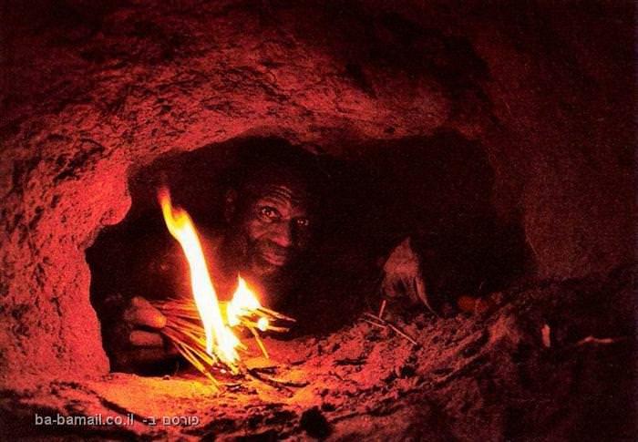 נחש, פיתון,  אפריקאים, פיתון סריגי, פיתון ענק, מאורת נחש