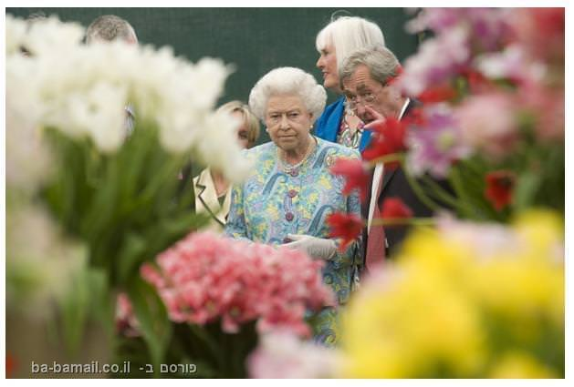 פרחים, תערוכת הפרחים של צ'לסי, סידור פרחים, גננות, המלכה, אליזבט