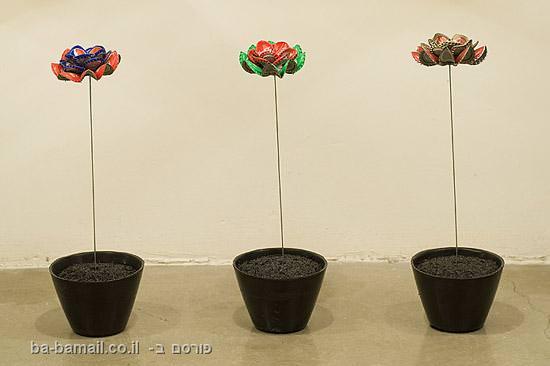 פקקים, אמנות, עציצים, פרחים, יואב קוטיק