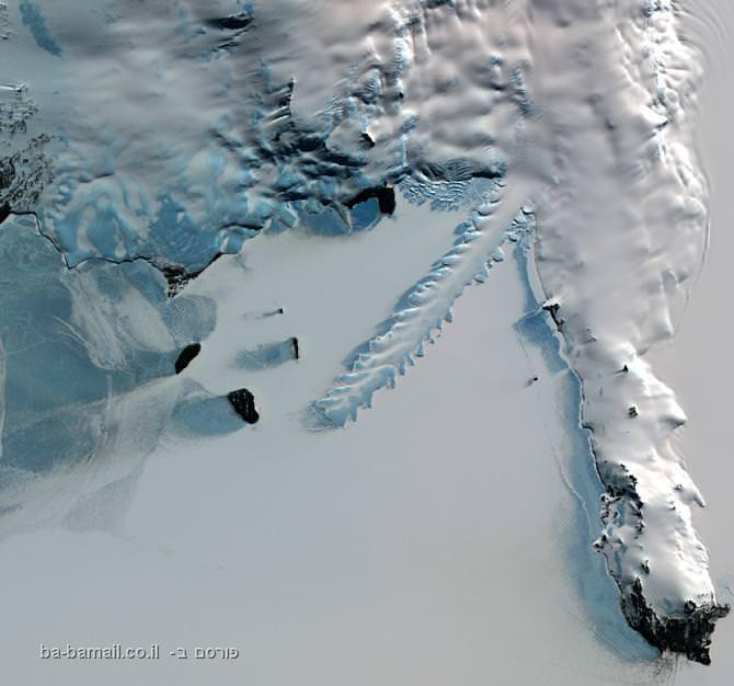 לשון הקרח ארבוס, אנטרקטיקה