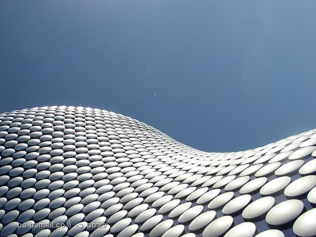אדריכלות אורגאנית