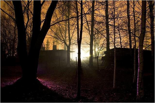 תמונות מדהימות מטרטו באסוטוניה