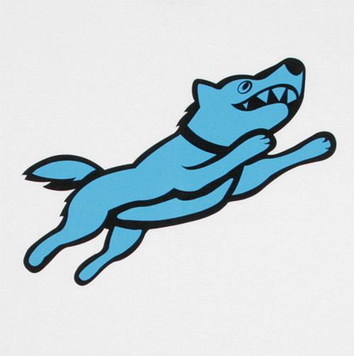 כלב מעופף