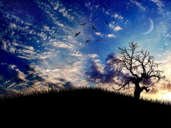 תמונות של טבע