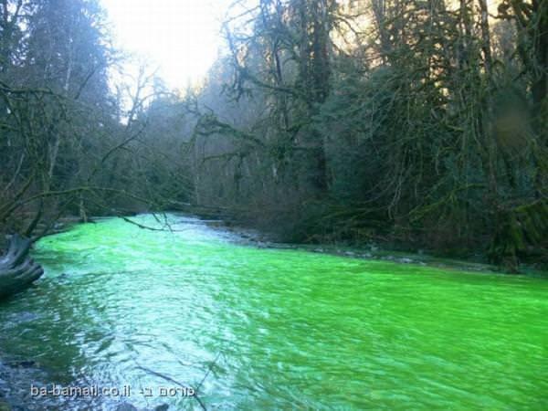 נהר ירוק