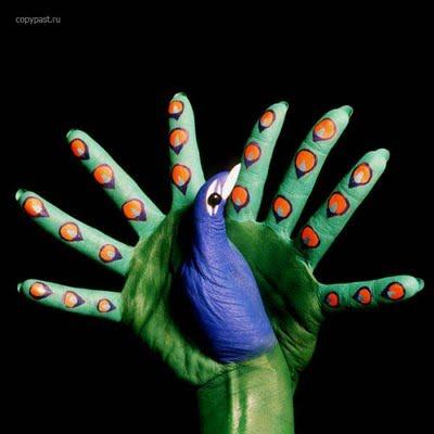צבעי ידיים