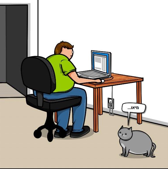 מדוע חתולים שורטים רהיטים - מצחיק! (בעריכה)