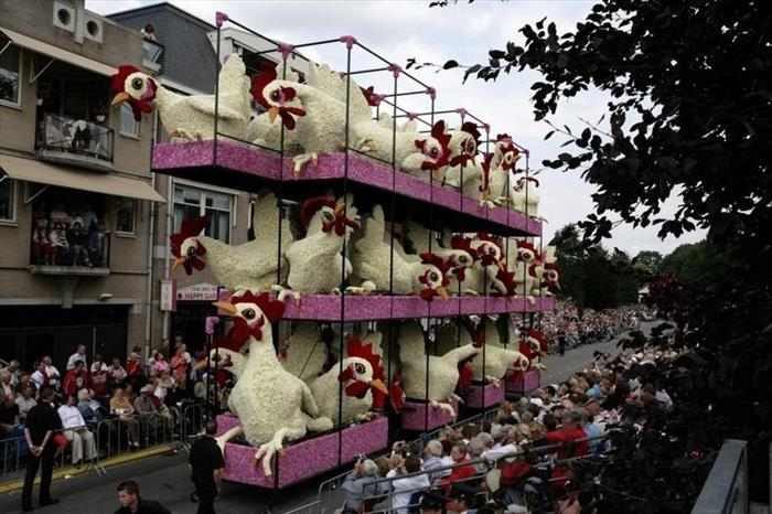 מצעד הפרחים בהולנד