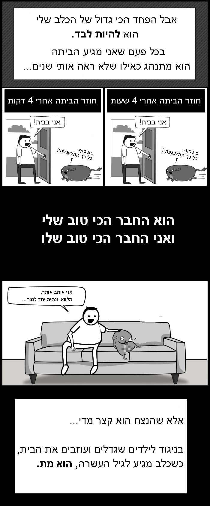 הפרדוקס של הכלב שלי - חמוד!