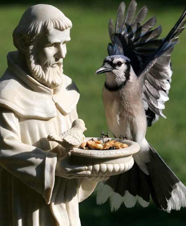 פסלי ובעלי חיים