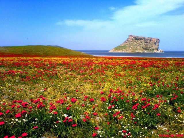 נוף באיראן