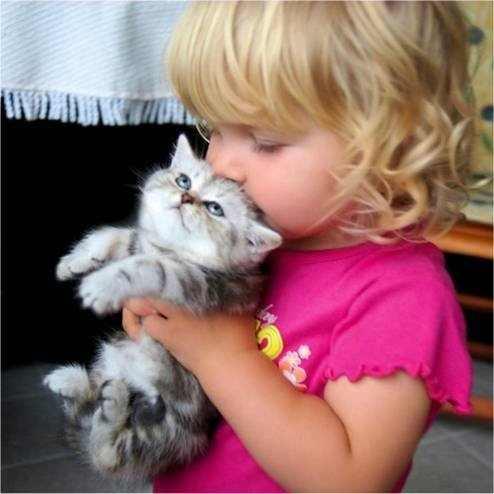 תמונות של חתולים וילדים
