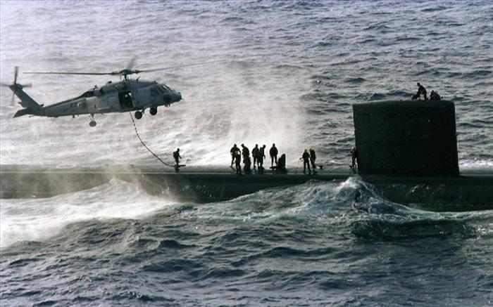 תמונות מדהימות של יחידת אריות הים