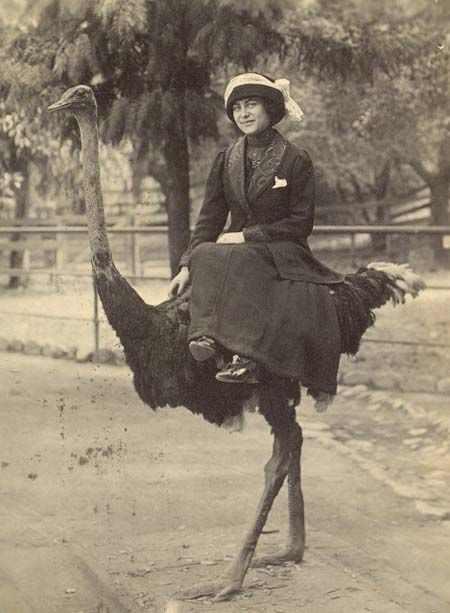 תמונות היסטוריות מצחיקות