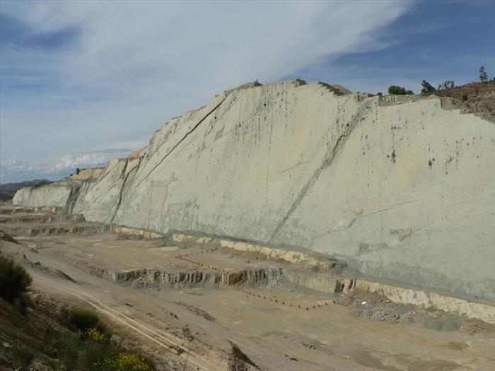 עקבות דינוזאורים על קיר בבוליביה