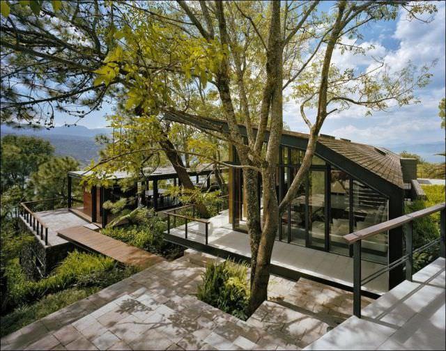 בתי העץ היפים בעולם