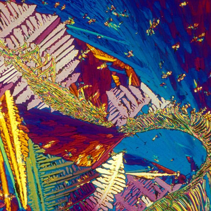 משקאות אלכוהוליים מתחת למיקרוסקופ