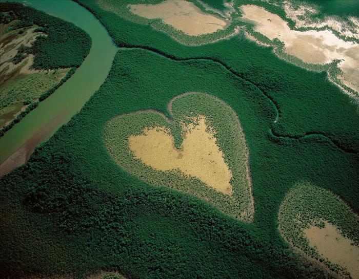 תמונות של לבבות בטבע