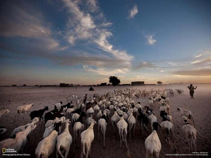 תמונות רקע מנשיונל גאוגרפיק