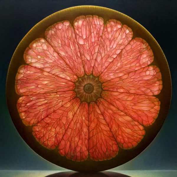 ציורים מדהימים של פירות שקופים