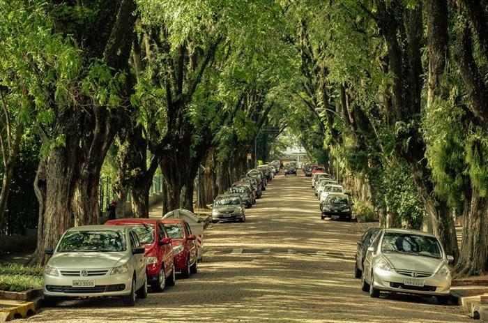 הרחוב היפה בעולם