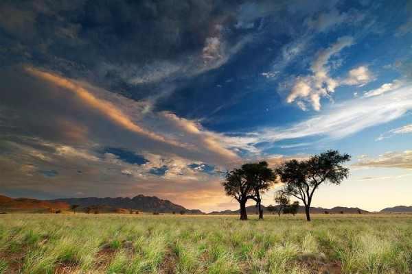 תמונות קסומות של מדבר בנמיביה