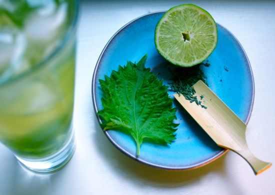 מוחיטו תה ירוק
