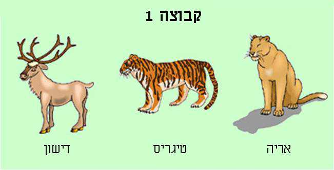 חידת דמיון מודרך עם בעלי חיים