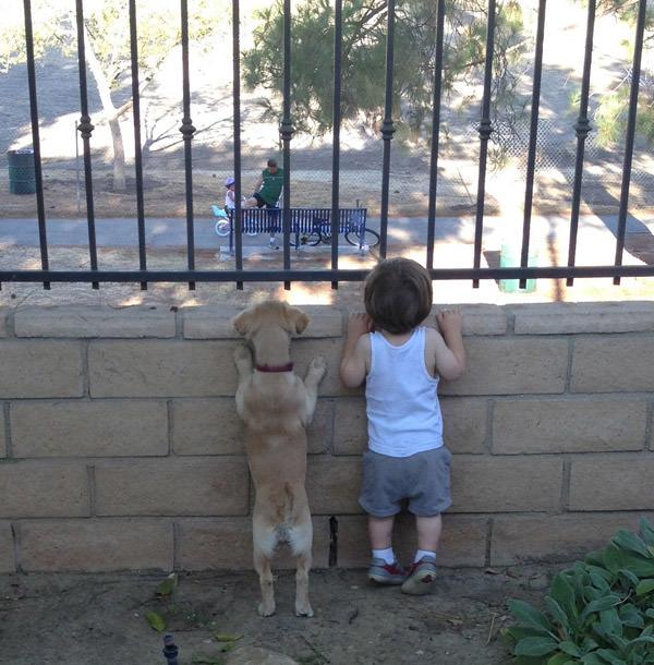 ילדים וחיות