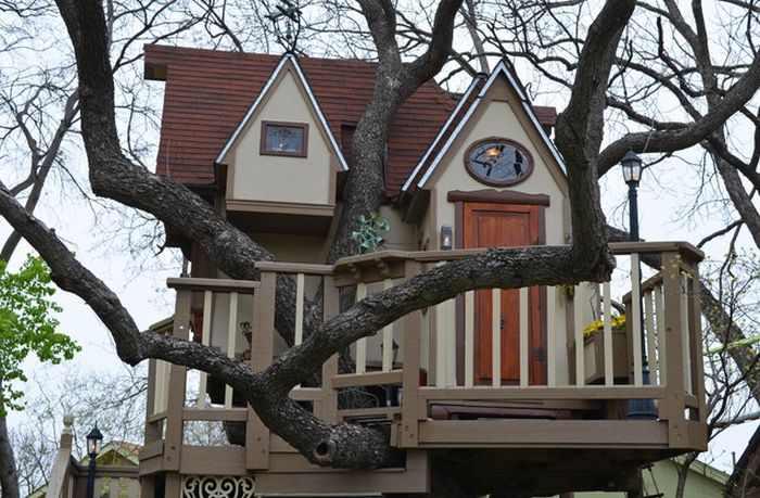 בית העץ המושקע והיפה בעולם