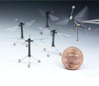 רובוט דמוי דבורה RoboBee מבצע טיסות מבוקרות