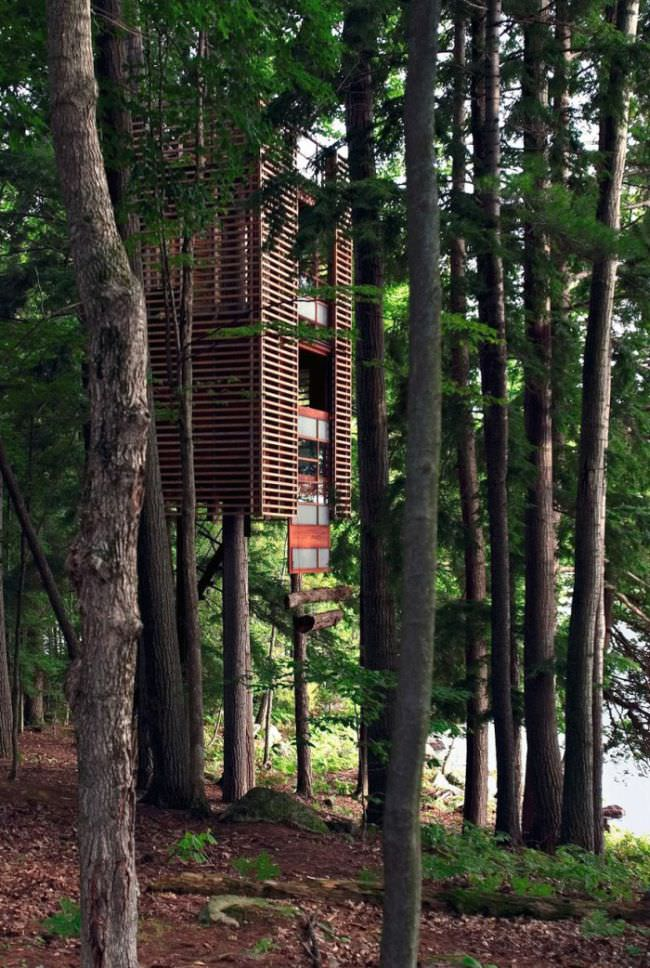 בתי עץ