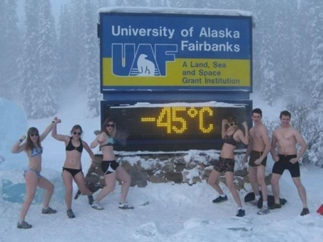 תמונות מצחיקות מאלסקה