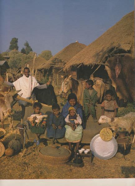 כמה רכוש יש למשפחות ממוצעות מסביב לעולם?