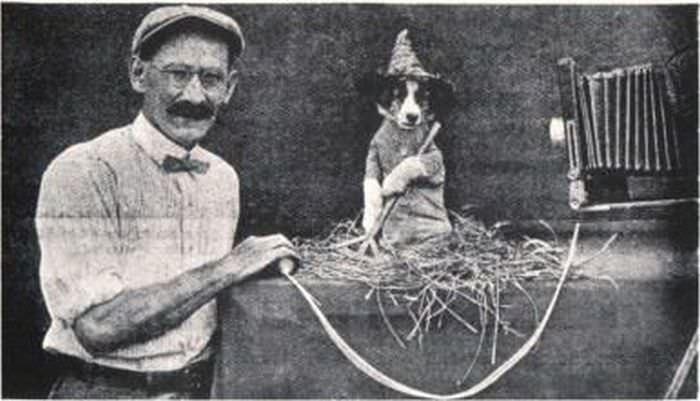 צילום בעלי חיים בשנות השלושים