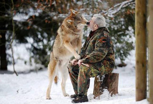 חיות בר ואנשים בקשרים מיוחדים