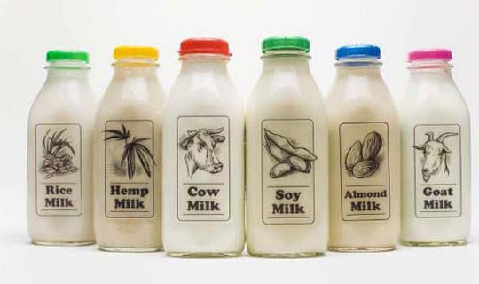 תחליף חלב