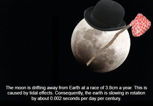 עובדות מדהימות שלא הכרתם על החלל