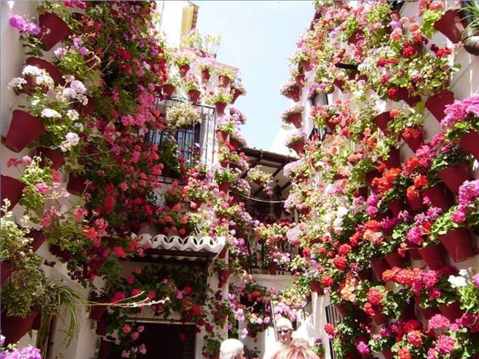 במבט ראשון העיר הזאת נראית יפיפייה, וכשמבינים למה, היא הופכת למדהימה!