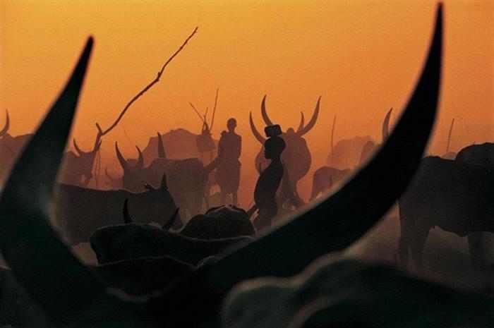 שבט הדינקה בסודן