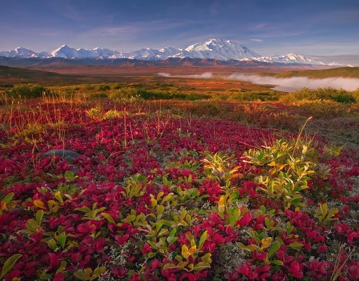 אלסקה