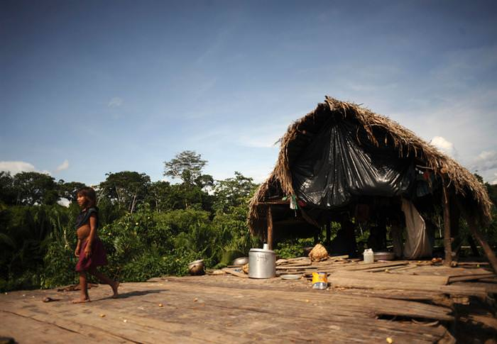 תרבות ילידי האמזונס