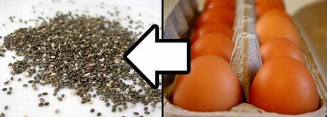 תחליפי מזון בריאים